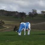 Голубая корова