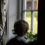 Мальчик за окном